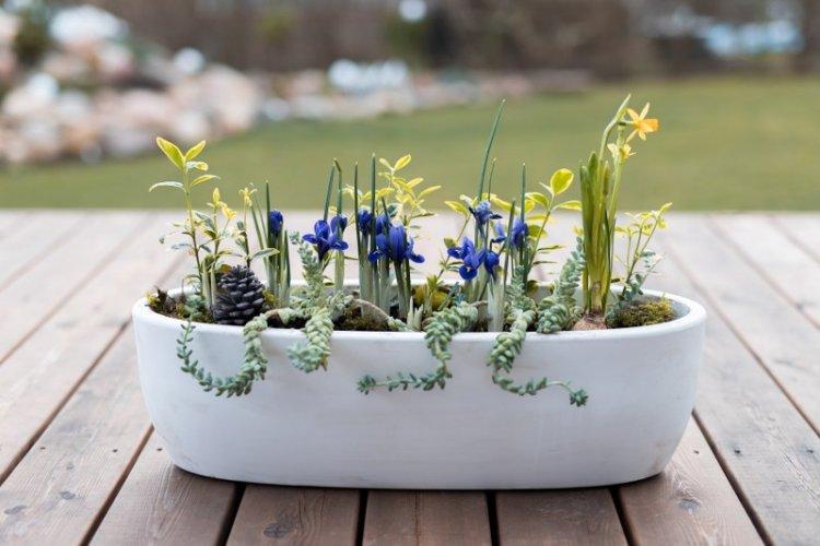 Atplaukia pavasaris